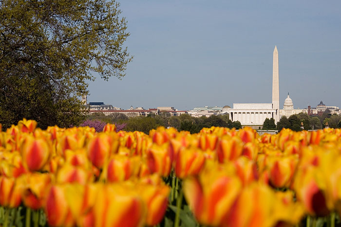 Washington Monument and Lincoln Memorial seen from Arlington, Virginia