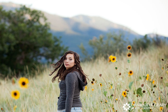 Colorado mountain portraits with wildflowers