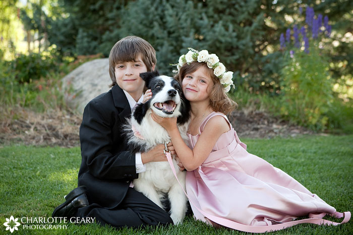 Wedding ringbearer, flower girl, and ring dog